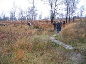 Wanderung durch das Naturschutzgebiet Struffelt Heide